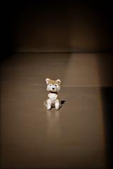 'die Bretter, die die Welt bedeuten' ... (WolfiWolf-presents-WolfiWolf) Tags: wolfiwolf wolfi wolf wolfismus wien bühne stage rampenlicht theater theatre limelight performance aufführung dirigat dirigent derprächtigste derschönste derbeste dereinzigartigste dersuperlativste solo monolog huldigung huldigtmeinewerke eneamaemü anfang butlers blueeyes conductor composition explorant fuddlers farky fresko farkas glück huldvoll ich jazzinbaggies kleinewolfis lupus lupuslupus multiversen multiverses marieschen master meinemajestät music naturwunder ohrwascherl portrait quantensuppe quantenuniversum rasant schöpfung stüben tanz universum universe vollmond lyric zeigen beauty schönheit noblesse