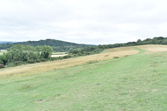 Traversing the Downs (PLawston) Tags: uk england britain surrey north downs st marthas hill