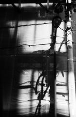 暗所 (a dark place) (Dinasty_Oomae) Tags: leicaiiia leica ライカiiia ライカ 白黒写真 白黒 monochrome blackandwhite blackwhite bw outdoor 東京都 東京 tokyo 千代田区 chiyodaku 影 shadow