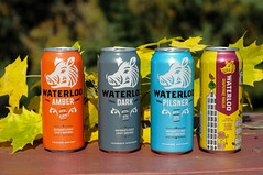 D30_1507.jpg (runwaterloo) Tags: 2018fallclassic10km 2018fallclassic5km 2018fallclassic fallclassic runwaterloo ryanmcgovern marketing waterloobrewing