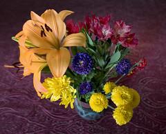 Frienship Bouquet (thies59) Tags: bouquet lilies alstroemeria flowers blooms friendship