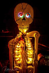 Ready For A Night Out On The Town (rebeccalatsonphotography) Tags: skeleton lights fairylights eyeballs halloween boo funky cute humorous scary rebeccalatsonphotography canon lowlight
