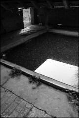 Avessé (Sarthe) (gondardphilippe) Tags: avessé sarthe maine paysdelaloire noiretblanc noir nb blanc blackandwhite black bw white lavoir architecture bâtiment campagne extérieur outdoor graphique monochrome ombre patrimoine quiet rural ruralité texture symétrie zen