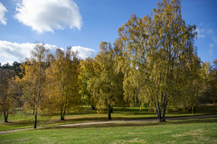 Autumn (Rudi Pauwels) Tags: goteborg gothenburg sverige sweden schweden fall tamron 18270mm tamron18270mm nikon d7100 autumn
