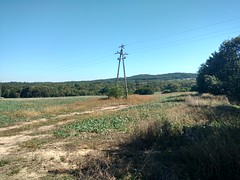Folwarczna (nesihonsu) Tags: wzgórzastrzelińskie poland polska przedgórzesudeckie sudeticforeland lowersilesia foresudeticblock dolnyśląsk dolnośląskie