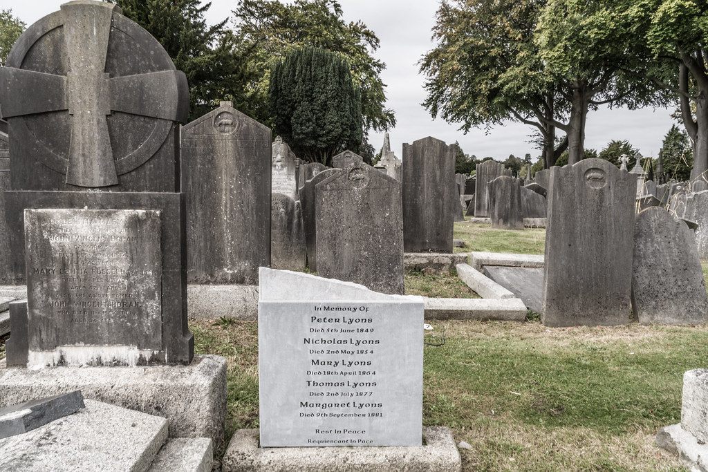 SEPTEMBER 2018 VISIT TO GLASNEVIN CEMETERY [ I USED A BATIS 25mm LENS AND I EXPERIMENTED WITH CAPTURE ONE]-144852