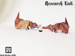 Research Unit - Barth Dunkan. (Magic Fingaz) Tags: anjing barthdunkan chien chó dog hond hund köpek origami paperfolding perro pies пас пес собака หมา 개 犬 狗