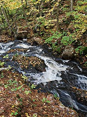 Chute-de-Luskville (Pwern2) Tags: luskville chutedeluskville luskvillefallstrail luskvillefalls eardleyescarpment ancientchamplainsea seaofchamplain precambrianrock chiefpontiac ottawanation ottawavalley clayplains josephlusk ncc landscape nature flora parks wild hiking keepitwild keepexploring exploring treesnotpeople trees forrest waterfall fallseason fall tree