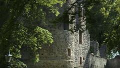 Approaching Huntly Castle (Elisafox22) Tags: elisafox22 sony rx100m3 lifeisarainbow green darkgreen hww windowwednesdays windows empty abandoned ruin wallwednesday walls stone ancient castle trees sunshine shadows huntlycastle aberdeenshire scotland elisaliddell©2018