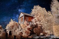 2018 10 05 Langenfeld Dreher Markt IR - 2 (Mister-Mastro) Tags: ir infrared 720nm haus house bäume trees gartencenter