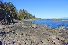 Rocky Beaches (21mickrange) Tags: douglasfir arbutus garryoak alder neckpoint salishsea hammondbay nanaimo vancouverisland beaches rock forest trees hiking