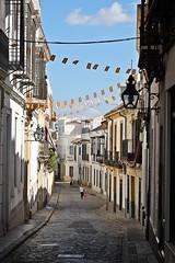 Calle Pedro López (just.Luc) Tags: street rue calle straat strasse spain spanje espagne españa spanien andalusië andalucía andalusien andalousie andalusia sevilla seville séville siviglia cobbles kasseien pavés