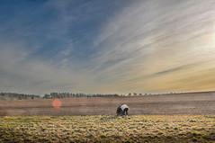 Le point rouge (balese13) Tags: d5000 indre nikonpassion saintelizaigne centre champ ciel contrejour flickr horizon nikon nuages paysan berry reflet agriculteur campagne
