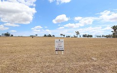 Lot 217 Hillview, Louth Park NSW