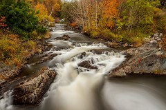 Rennie's River (Karen_Chappell) Tags: renniesriver grandconcourse stjohns newfoundland nfld canada atlanticcanada avalonpeninsula eastcoast longexposure nd110 scenery scenic landscape autumn fall river flow trees orange october nature green brown water rocks wideangle