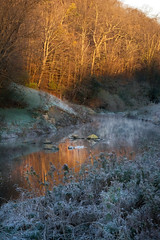 When the sun breaks (Mulewings~) Tags: blackbottomcreek mist water reflections trees thecreek sky frost cold shadows light