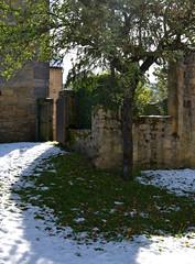 Des pommes sous la neige (Michel Seguret Thanks for 13.6 M views !!!) Tags: france aveyron rouergue michelseguret nikon d800 pro