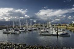 Port de Wemeldinge (musette thierry) Tags: wemeldinge holande zélande nederland musette thierry jour bateau nikon board voilier photographie new falowme europe bleu