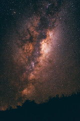 Milford Road by night (bruit_silencieux) Tags: newzealand nz oceania southisland sonya7 sigma35mm14art milford milfordsound night sky stars milkyway