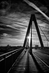 While in Cologne (Christophe_A) Tags: cologne germany christophe christopheanagno christopheanagnostopoulos nikon d850 opera tokina 50mm tokinaopera nikond850 blackwhite blackandwhite shadows rhine river bridge sky dramatic clouds sunset handheld light urban city