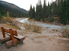 HBM (Mr. Happy Face - Peace :)) Tags: bench benchmonday hbm forest river tree art2018 cans2s hiking autumn fall parkscanada emptyseats