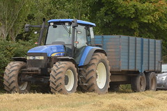 New Holland TM155 Tractor with a Midleton Steel Works Grain Trailer (Shane Casey CK25) Tags: new holland tm155 tractor midleton steel works grain trailer traktor traktori tracteur trekker trator ciągnik rathcormac newholland casenewholland blue harvest grain2018 grain18 harvest2018 harvest18 corn2018 corn crop tillage crops cereal cereals golden straw dust chaff county cork ireland irish farm farmer farming agri agriculture contractor field ground soil earth work working horse power horsepower hp pull pulling cut cutting knife blade blades machine machinery collect collecting nikon d7200