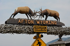 Teaton 0073 (mart.panzer) Tags: teaton yellowstone us usa nationalpark nature scenic top highlights attractions must see awesome best bestof landscape bears elk bison teton grandteton