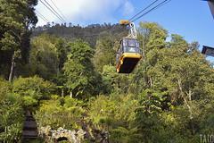 Subiendo a Monserrate (Tato Avila) Tags: colombia colores cálido cielos monserrate bogotá montañas naturaleza nikon teleférico arboles vida vegetal sky colombiamundomágico