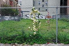 New-York-Street-photography-26 (Jordan Vitanov) Tags: newyork newyorkcity newyorker street streetphotography streetstyle