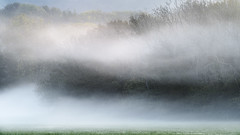 autumn mist (SimonMastersPhotography) Tags: nist trees grass field scenic northkentdowns flow autumn