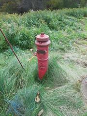 Kennedy PIV, Northfield, MA (nhhydrants) Tags: northfield massachusetts piv postindicator postindicatorvalve