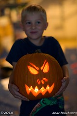 Halloween 2018_5981_edited-1 (arx7) Tags: anant raut anantraut anantrautorg anantrautcom halloween spooky october 31st 31 october31st pumpkin carving contest kidsparty ghosts ghouls goblins costumes scary masks halloweenparty hauntedhouse jackolantern catpumpkin familycostume diadelosmuertos dayofthedead dayofthedeadpumpkin witch warlock broom blackcat skull skeleton wraith spirit undead deadshallrise cobweb