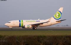 Transavia Boeing 737-7K2(wl) PH-XRB / AMS (RuWe71) Tags: transavia hvtra airfranceklm nederland thenetherlands amsterdam boeing boeing737 b737 b737700 b7377k2 b737700wl b7377k2wl boeing737700 boeing7377k2 boeing737700wl boeing7377k2wl phxrb cn282561298 amsterdamairport amsterdamschiphol amsterdamschipholairport schiphol schipholairport schipholamsterdam ams eham narrowbody twinjet runway winglets sunset dusk evening polderbaan