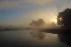 IMG_4748 (geraldtourniaire) Tags: eos6d ef natur nature nebel sonnenaufgang landschaft canon 6d 24105l licht mittelfranken goldene gegenlicht
