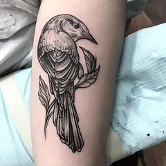 Thank you @michal_kc ! . .. ... . .. #eyeofjadetattoo #eyeofjade #jeremygolden #jeremy_golden #jeremygoldentattoo #blackwork #blackworkerssubmission #darkartists #blacktattoomag #blacktattooart #btattooing #onlyblackart #blacktattoo #blackink #black #line