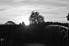 Guildford 13 October 2018 017 (paul_appleyard) Tags: guildford surrey october 2018 bridge rails black white wey navigation