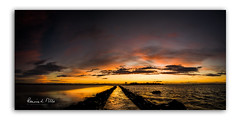 The Big Picture (RonnieLMills 5 Million Views. Thank You All :)) Tags: rough island islandhill sunrise dawn early morning colours high tide strangford lough causeway newtownards comber county down northern ireland wide angle pano photography thebigpicture ronnielmills