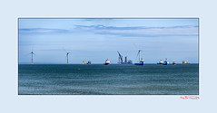 Placing a Jacket (Offshore Wind) (The Terry Eve Archive) Tags: vessel jacket offshorewind windfarm ship heavylift cranes turbines seagulls