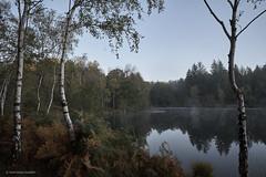 Lever de soleil sur le plan d'eau des Sagnes 2 (domingo4640) Tags: lot saintbressou plandeau campagne loxia loxia21 loxia2821 france departementdulot espritlot midipyrénées sagnes quercy eau etang arbre brume paysage