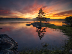 The Warmth of Summer (Ole Henrik Skjelstad) Tags: norge norway tree summer lonetree lake reflections water sunset