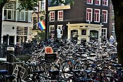 bikes everywhere (sabinakurt_photo) Tags: bikes amsterdam streetphotography sabinakurtphotography netherlands travel holiday2018 visitamsterdam people photopassion