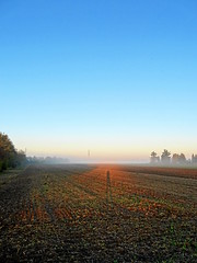 In the Distance (The-Beauty-Of-Nature) Tags: autumn fall herbst cozy mine october nature photography original morning morgen sunrise sonnenaufgang fog nebel mist light licht early früh sun sonne sunny sonnig fields feld