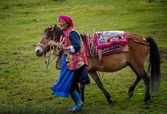 Tibetan (Rod Waddington) Tags: china chinese yunnan shangrila tibetan woman horse outdoor culture cultural ethnic ethnicity saddle pony people