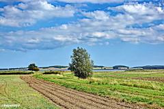 Landschaft (garzer06) Tags: himmel landschaft wolken deutschland landschaftsbild gras baum wasser berg landschaftsfoto tribbevitz mecklenburgvorpommern landscapephotography inselrügen vorpommernrügen naturephoto landschaftsfotografie naturphotography naturfoto naturfotografie