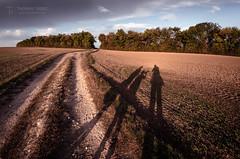 Our Shadows (Thomas TRENZ) Tags: austria familie felder fields thomastrenz ausflug family landscape loweraustria niederösterreich path schatten shaddows way weekend weg wochenende österreich