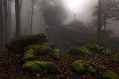 urbasa (Patxi Pérez) Tags: urbasa navarra bosque niebla musgo rocas verde
