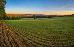 Sám voják v poli (Radebe27) Tags: landscape krajina podzim autumn zlinskykraj czechrepublic ceskarepublika sony nex6 sel1670z hdr