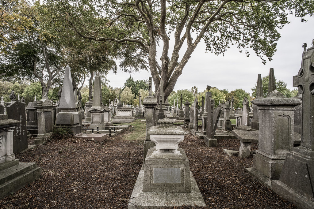 SEPTEMBER 2018 VISIT TO GLASNEVIN CEMETERY [ I USED A BATIS 25mm LENS AND I EXPERIMENTED WITH CAPTURE ONE]-144829
