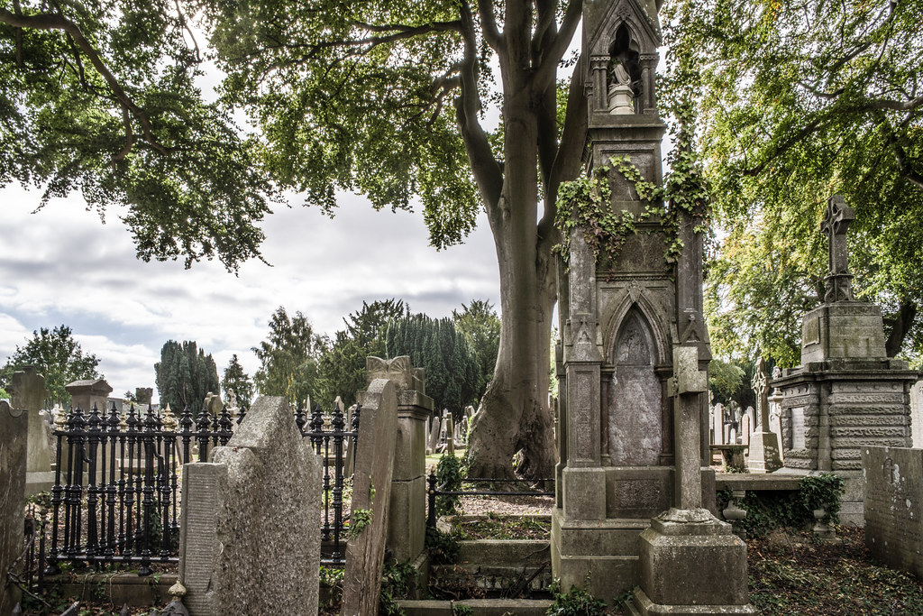 SEPTEMBER 2018 VISIT TO GLASNEVIN CEMETERY [ I USED A BATIS 25mm LENS AND I EXPERIMENTED WITH CAPTURE ONE]-144839