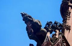 Vacances_0588 (Joanbrebo) Tags: freiburg freiburgimbreisgau freiburgermünster badenwürttemberg de deutschland catedral church esglèsia eglise iglesia gargola gargoyle canoneos80d eosd autofocus